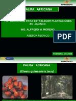 El Fiprodefo y La Palma Africana Ver 4.0