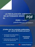 3._FISCALIZACIÓN_AMBIENTAL._casos
