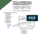 GACETA COMUNAL NRO 01.doc