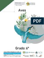 6º Aves tarea todos los periodos