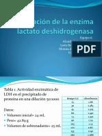 Purificación de la enzima lactato deshidrogenasa