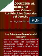 8. PRINCIPIOS GENERALES DEL Dº.ppt