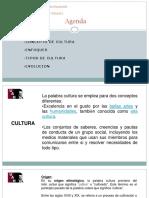 La Cultura - Enfoques - Tipos y Evolución