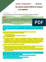 SESION 20       CIENCIA Y TECNOLOGIA 3º.pdf