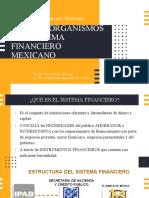 2 APOYO PARA EL MAPA Unidad 1 Sistema Financiero Mexicano.pdf