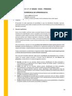 5°y 6°EXPERIENCIAS DE APRENDIZAJE AGOSTO 2020(1).pdf