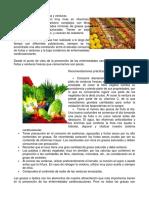 Lo Que Sabemos de Las Frutas y Verduras