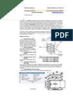 Microsoft Word - Roscas (tipos, propiedades, ejemplos), Martes 23 de Enero Del 2011