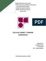 Ciclo de Carnot y Rankine (Ejercicios)