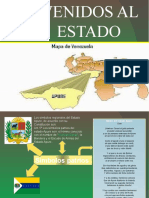 PRESENTACION ESTADO APURE.pptx