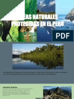 ÁREAS NATURALES PROTEGIDAS EN EL PERÚ (1).pptx
