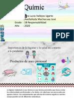 Avanze del proyecto de quimica.pptx