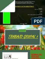TRABAJO GRUPAL