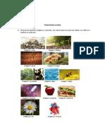 Ejemplos de actividades y recursoss