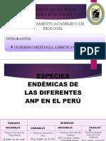 ANP DEL PERU POR CATEGORIAS