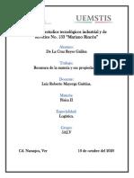 Resumen - De La Cruz Reyes Galilea
