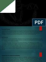 ACTIVIDAD PROCESAL (1) (1) (1).pptx
