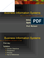 1A Business Information Systems Spring