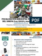 11_Fiscalización Ambiental en el Marco del SINEFA PYMIS 2020