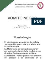14-VOMITO NEGRO.docx