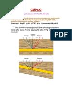 GUPCO Exam 1.pdf