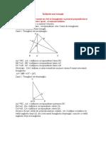 Înălțimile unui triunghi
