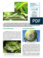 ficha_tecnica_42_2011.pdf