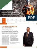 memoria_2019_cap_01_perfil_3_25.pdf