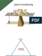 09. Ecosystem Functioning.pptx