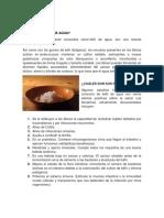 Guia Kefir de Agua.pdf