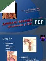 Anatomía del Aparato Respiratorio solo anato