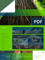 46eede9f-greenpeace-relatorio-anual-2019