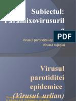PARAMIXOVIRUSURILE.pptx