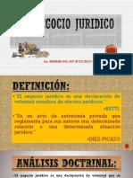 EL NEGOCIO JURIDICO