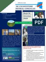 #6e MAGAZINE ECOSYSTEME ENTREPRENEURIAL CONGOLAIS
