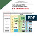 GUIA 3. 1 LA CADENA ALIMENTARIA