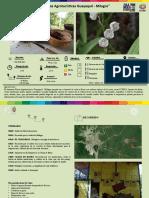 Circuito de Fincas Agroturisticas Guayaquil - Milagro