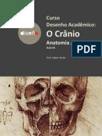 AULA01T04-Crânio-Galber Rocha- 2019