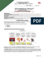 SEPTIMO - Guía Articulada  Bio-Química y Ética IIP
