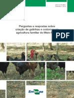 Doc248PerguntasRespostasCriacaoGalinhasCodornas.pdf