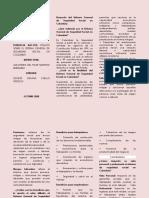 EVIDENCIA AA1 EV2 FOLLETO GENESIS JOHANA CUELLO OROZCO