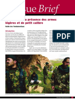 SAS-IB14-Documenting-Small-Arms-FR.pdf