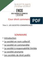 les sociétes.pdf