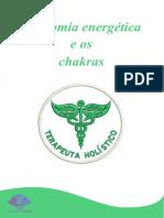 Anatomia energética e os chakras