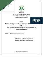 TCC - Relatório de Estágio e Caso Clinico