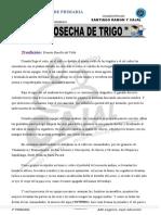 PLAN LECTOR  01 octubre doc - copia.doc