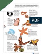 37009_7000390459_04-19-2019_182528_pm_Lectura_Invertebrados_recurso_pdf-2.pdf
