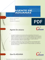exposicion de agente de aduanas (1)