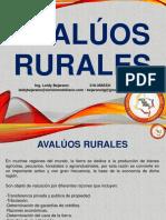 AVALUOS RURALES - PRESENTACIÓN.pdf