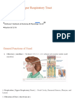 fisiologi URT